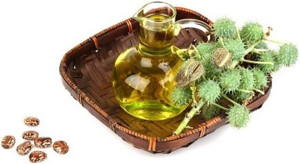 Касторовое масло для ресниц и бровей: отзывы, способ применения, польза