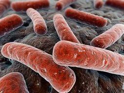 Туберкулез: как передается, можно ли заразиться половым путём