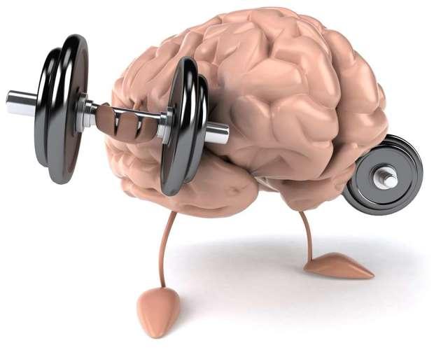 Витамины и микроэлементы, способствующие укреплению нервной системы